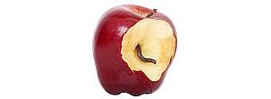 The Evolution of Modern Computer Viruses. The Worm inside the apple