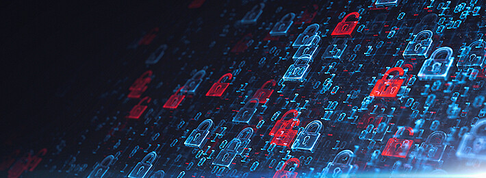 Wibu-Systems Security